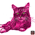 Pink Maine Coon Cat - 3926 - Wb by James Ahn