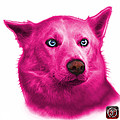 Pink Mila - Siberian Husky - 2103 - Wb  by James Ahn