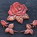 Pink My Lady Rose by Bill Fugerer