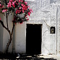Pink Oleander By The Door by Lainie Wrightson
