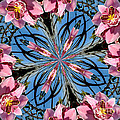 Pink Orchid Kaleidoscope 2 by Rose Santuci-Sofranko