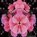Pink Punch by Ben Yassa