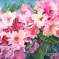 Pink Rhodies On Demand by Michele Thorp