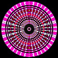 Pink Rings II by Visual Artist Frank Bonilla