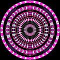 Pink Rings by Visual Artist Frank Bonilla