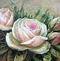 Pink Rose And Rose Buds II by Anke Wheeler
