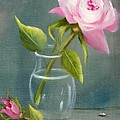Pink Rose In Glass by Joni McPherson