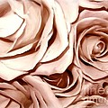 Pink Roses Bouquet Sketchbook Effect by Rose Santuci-Sofranko