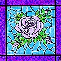 Pink Roses by Jim Harris