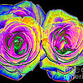 Pink Roses With Colored Foil Effects by Rose Santuci-Sofranko