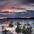 Pink Sunset At The Lake by Guido Montanes Castillo