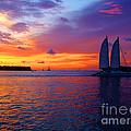 Pink Sunset In Key West Florida by Susanne Van Hulst