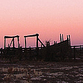 Pink Sunset Over Corral by Cathy Anderson