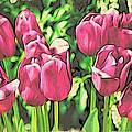 Pink Tulips by Alice Gipson