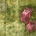 Pink Tulips And Old Clock by Vesela Yokova