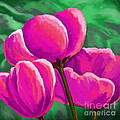 Pink Tulips On Green by Tim Gilliland