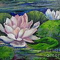 Pink Water Lilies By Barbara Haviland by Barbara Haviland
