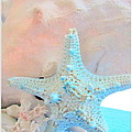Pink White And Blue Conch And Sea Shells  by Danielle  Parent