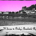 Pinky's Beachside Resort by Absinthe Art By Michelle LeAnn Scott