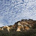 Pinnacles Of Fraser Island by Linda Lees