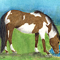 Pinto Mustang Horse Mare Farm Ranch Animal Art by Cathy Peek