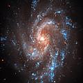 Pinwheel Galaxy by Jennifer Rondinelli Reilly - Fine Art Photography