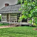 Pioneer Cabin 21 by Douglas Barnett