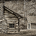 Pioneer Cabin And Shed In Cades Cove E227 by Wendell Franks