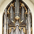 Pipe Organ by Maria Coulson