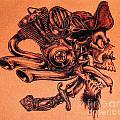 Pirate by Sean Ingram