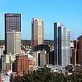 Pittsburgh Skyline by Pat McGrath Avery