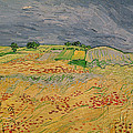 Plain At Auvers by Vincent Van Gogh