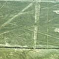 Plains Of Nazca - Spider by Allen Sheffield