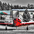 Flying To Lunch In Pacific Northwest Washington  by Tap On Photo