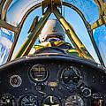 Plane Ride by David Hart