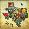 Nature Map Of Texas by Gary Grayson