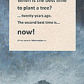 Plant Trees by David Clode