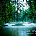 Plantation Bridge by Perry Webster