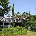 Plantation Home At Magnolia Plantation by Christiane Schulze Art And Photography