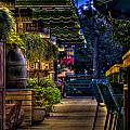 Plants And Boardwalk V by Mike Oistad