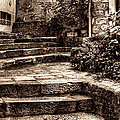 Plants Grow In The Uneven Stairs Climbing Towards The Tower Sepia by Weston Westmoreland