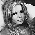 Play It As It Lays, Tuesday Weld, 1972 by Everett