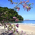 Playa Espadillia Sur Manuel Antonio National Park Costa Rica by Kurt Van Wagner
