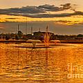 Playa Lake At Sunset by Mae Wertz