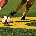 Plays On The Ball by Laddie Halupa