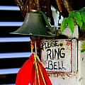 Please Ring Bell by Nick Busselman