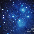 Pleiades Star Cluster by Jason Ware