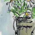 Plein Air Sketchbook. Ventura California 2011.  Tall Bucket Of Daisies From My Backyard by Cathy Peterson