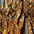 Plenty Of Small Dried Fishes On A Stack by Jean Schweitzer