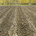 Plowed Spring Farmland Ready For Planting In Maine by Keith Webber Jr